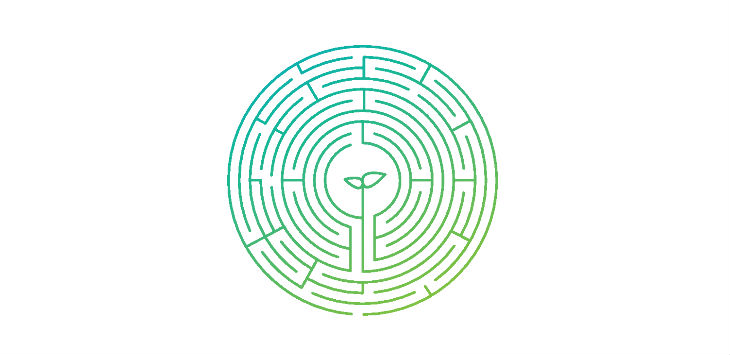 CFO Survey image_Maze