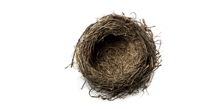 Monday Briefing empty nest